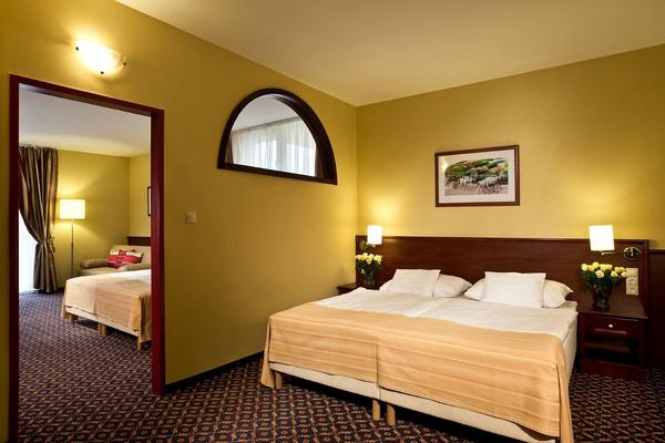 Основное здание - Suites with 2 rooms