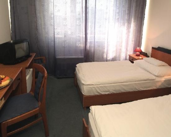 Основное здание - Comfort Room Type